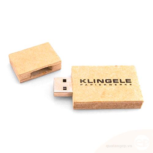 USB gỗ 18